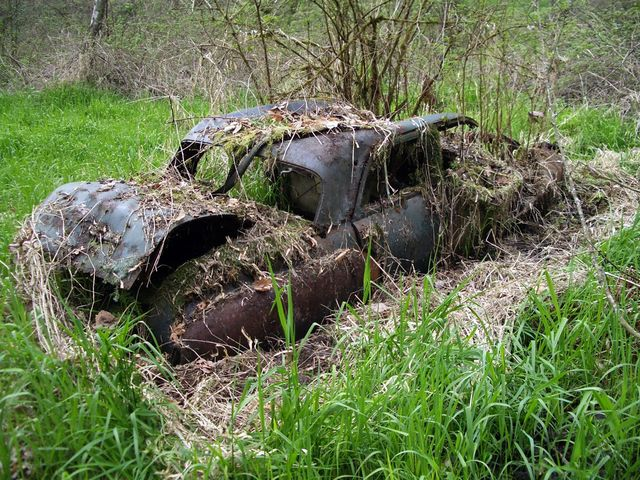 An overgrown car that has been dumped